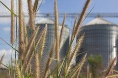 Umgebende grüne Umgebung der Industrie lizenzfreie stockbilder