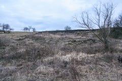 Umgebungen das Feriendorf Land Lizenzfreies Stockbild