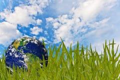Umgebungskonzept, Kugel im Gras Lizenzfreie Stockfotografie