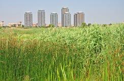 Umgebungslandschaft Stockbilder