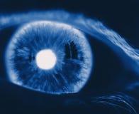 Umgekehrtes Auge stockfotografie