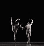 Umgekehrtes Bild-klassisches Ballett ` Austen-Sammlung ` Stockfoto