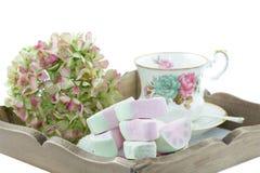 Umhüllung-Behälter mit klassischer Teetasse Lizenzfreies Stockfoto