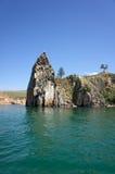 Umhang-Held, Baikal Lizenzfreie Stockbilder