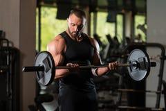 Umięśnionej samiec Wzorcowi Ćwiczy bicepsy Z Barbell Zdjęcia Royalty Free