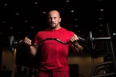 Umięśnionej samiec Wzorcowi Ćwiczy bicepsy Z Barbell Obraz Stock
