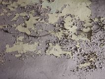 Umidade úmida na parede foto de stock