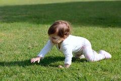 Uśmiechnięty dziewczynki creepng na trawie Fotografia Royalty Free