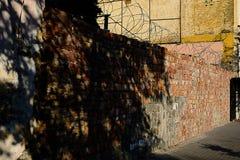 Ummauern Sie überwucherte, alte Backsteinmauer, Hintergrund, Beschaffenheit, die alte verfallene Backsteinmauer, die mit Gras übe Lizenzfreie Stockfotografie