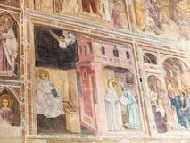 Ummauern Sie Dekor in der Kirche des Eremitani in Padua Stockfotografie
