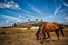 Ummauerte Stadt in Toskana, Siena, Italien lizenzfreies stockbild