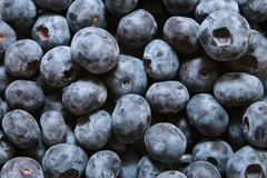 Ummm berries. Delicious and nutritious blue berries hearty healthy Stock Photo