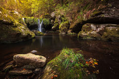 Umn in the Forest with waterfall an leaves Royalty Free Stock Photo
