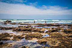 Umngazi River Mouth. South Africa - January 22 2015: The beauty of the Umngazi River mouth Royalty Free Stock Photo