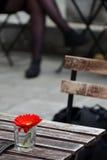 Umore della primavera Immagini Stock Libere da Diritti