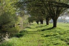 Umore della primavera sul fiume Niers vicino al oedt di Grefrath Fotografia Stock Libera da Diritti