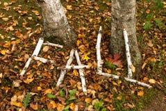 Umore di autunno Immagini Stock Libere da Diritti