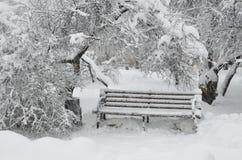 Umore di inverno Immagini Stock Libere da Diritti