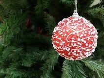 Umore di Natale e del nuovo anno Immagini Stock Libere da Diritti