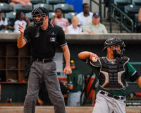 Umpire Kyle Wallace. Minor League Baseball Umpire Kyle Wallace Royalty Free Stock Images