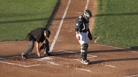 Umpire, Referee, Judge, Sports. Stock video of  a baseball umpire cleaning home plate stock footage