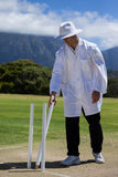 Umpire removing wicket on field at match Stock Photography