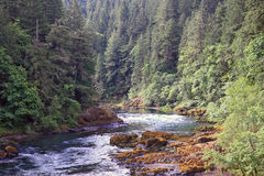 Umpqua River Royalty Free Stock Photography