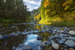 Umpquarivier in de herfst Stock Foto's