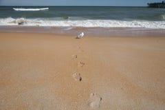 Umwandlung am Strand Lizenzfreies Stockfoto