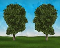Umwelt, Ökologe, Environmentlism, Natue, Mann lizenzfreies stockbild