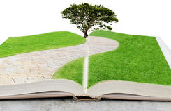 Umwelt-Buch Lizenzfreies Stockbild
