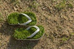 Umwelt der globalen Erwärmung, grüne Flipflops des Letzten lokalisiert auf getrocknetem Gras Stockfoto