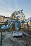 Umwelt-Schildkröte stockfoto