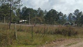 Umwelt, zum in Siguatepeque, Honduras zu wohnen Lizenzfreies Stockbild