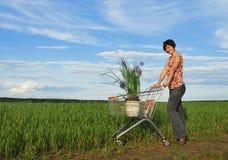 Umwelteinkaufen Stockfoto