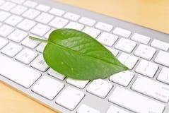 Umweltfreundlicher PC Lizenzfreie Stockfotos
