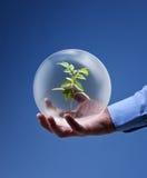 Umweltfreundliches Geschäftskonzept Stockbild
