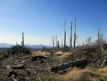 Umweltkatastrophe Stockfotos