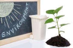 Umweltkonzept mit einem grünen Pflänzchen, einem Abfalleimer und Th Stockfoto