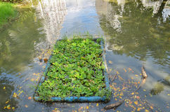 Umweltproblem, Abwasser, industrielles Abwasser Stockfotos