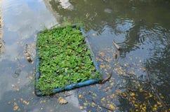Umweltproblem, Abwasser, industrielles Abwasser Stockfotografie