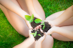 Umweltslogans, Sprechen und Phrasen über die Erde, die Natur und das gehende Grün Lizenzfreie Stockbilder