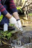 Umweltverschmutzungsstudie eines Wasserlaufs Stockfotos