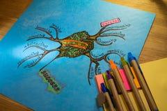 Umysł mapa uczenie procesu skuteczność zdjęcie royalty free
