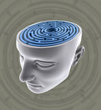 umysł zmieszany Zdjęcia Stock