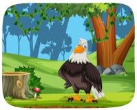 Un águila en fondo de la naturaleza stock de ilustración