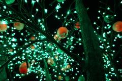 Un árbol con las lámparas Imágenes de archivo libres de regalías