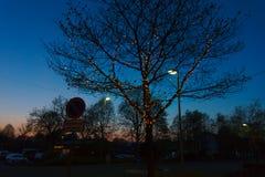 Un árbol con una guirnalda en el verano Imagenes de archivo