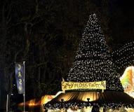 Un árbol de navidad Fotos de archivo libres de regalías