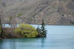 Un árbol del otoño a lo largo del lado del lago fotos de archivo libres de regalías